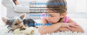 Get your Carpets Cleaned with best service providers in Sydney