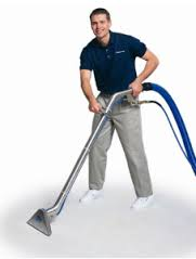 carpet cleaner professional sydney